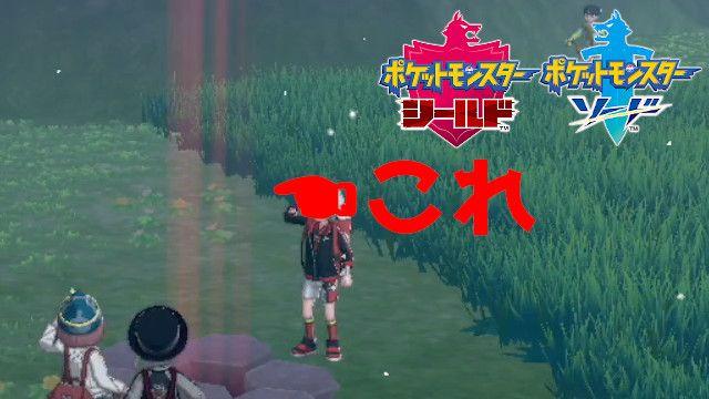 レイド リセマラ ポケモン剣盾